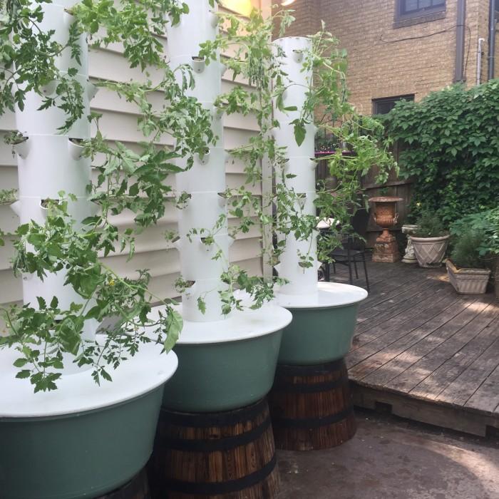 Towers for Parigi Dallas - Dallas Urban Farms